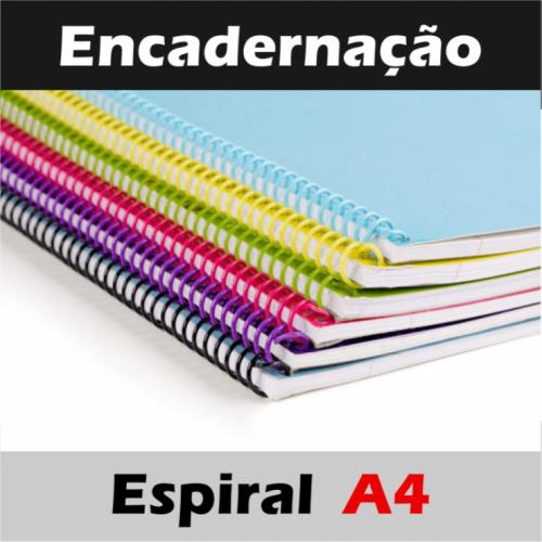 01 UNID. ENCADERNAÇÃO ESPIRAL DE 100 À 150 FLS / TAM. 210cm X 297cm / CAPA E ESPIRAL PVC